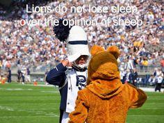 Lions don't lose sleep...