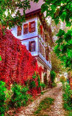 Şirince.. Selçuk . İzmir.. Turkey