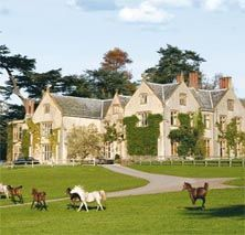 Coumbe House- Gittisham, Honiton, Nr Exeter, Devon, England - voted Conde Nast most romantic hotel in UK '12: http://www.combehousedevon.com/