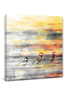 "Parvez Taj Pitkin Birds Canvas Wall Art - 32"" x 32"""