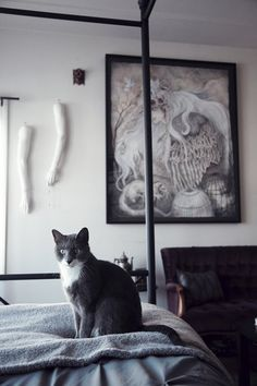 """Caitlin & Dave's """"Victorian Eclectic"""" Apartment in Oakland — House Call 