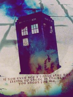 """If you ever see a little blue box, flying in the sky, you shout for me."" Donna Noble   I WILL!"