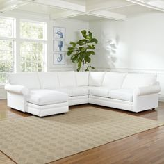 Newton Sectional #birchlane