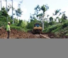 Terrain, tropics and topography Army Corps Of Engineers, Puerto Rico, Tropical, Country Roads, News, Puerto Ricans