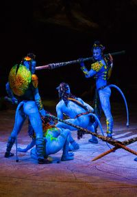 I would CRY if i could go see Cirque de Soleil's TORUK!!!!