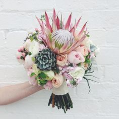 King protea, succulents, airplants, David Austins, ranunculus, sage, stock and hypericum berry. A gorgeous spring bouquet