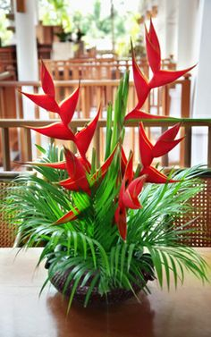 Red Heliconia Centerpiece for Grand Cayman Weddings Tropical Flowers, Tropical Floral Arrangements, Church Flower Arrangements, Church Flowers, Wedding Arrangements, Exotic Flowers, Beautiful Flowers, Big Flowers, Flowers Garden