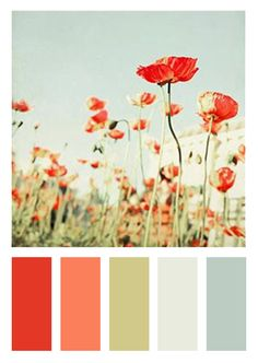 Color Scheme | Orange-Red, Pink, Sage Green, Light Grey-Blue, Slate Blue