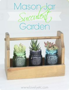 Mason Jar Succulent Garden - such a great Mother's Day gift or teacher gift!