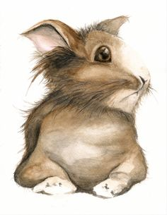 Woodland Brown Bunny - Art Print from Original Painting
