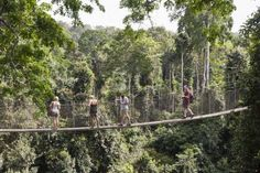 WALK THE KAKUM CANOPY WALKWAY Where: Ghana The Kakum National Park has a long series of hanging bridges known as the Kakum Canopy Walkway. Walk over these bridges for a thrilling experience while accessing the inner reaches of the forest.