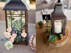Succulent Wedding Centerpieces And Table Number Numbers Beautiful Eyes
