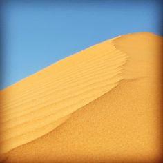 This is the very tip of Big Red the famous sand dune on the eastern edge of the Simpson Desert near Birdsville. This July the Big Red Bash rockin' the Simpson concert will be held again. For the Travel Outback Australia team this will be our first time.  Give us a like if you're going or if you'd like to attend a concert in the desert at such an iconic location.  #traveloutbackaust #bigredbash #simpsondesert #birdsville #queensland #tourism #amazing #seeaustralia #travel #travelgram…
