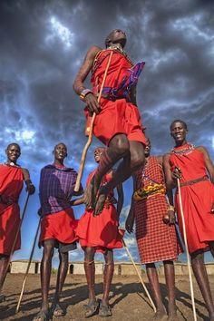 Maasai warriors dancing and jumping (Masai Mara)