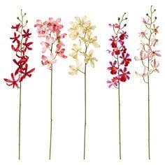 $2 :: SMYCKA Artificial flower - IKEA ORCHID