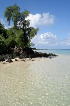 Sublime Beach, Mauritius... Book early and save! Find Special Deals in HOT Destinations only at Expe... http://youtu.be/pl5K_GMnJHo @YouTube Expedia http://biguseof.com/travel