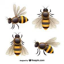 """Résultat de recherche d'images pour """"abeille design"""""""