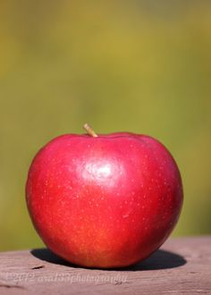 Red Apple Home Decor  5x7 Inch Fine Art Photography by ara133photography,
