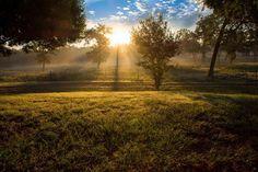 "Photo ""Sunrisefromtheporch"" by maureenlight"