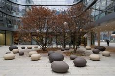 Image result for pebble seat tree