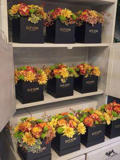 Őszi virágdobozok / Autumn flower boxes