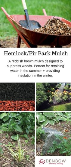 Hemlock/Fir Bark Mulch is a reddish brown mulch designed to suppress weeds and provide a natural look in landscaping. It is perfect for retaining water in the summer and providing insulation in the winter.