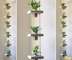 Para quem gosta de ser criativo na decoração de casa, uma boa ideia é esse modelo de jardim suspenso. Neste caso foram usados recipientes de vidro para o cultivo das plantas.