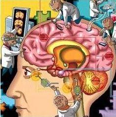 Esquizofrenia, doença bipolar e depressão: o que têm em comum? Investigadores americanos descobriram grupos de genes que estão afetados nos indivíduos com esquizofrenia, doença bipolar e depressão major. O estudo demonstrou que este conjunto de genes afetados está envolvido na produção de proteínas, no controle da comunicação entre as células cerebrais e na ativação de uma resposta imunológica
