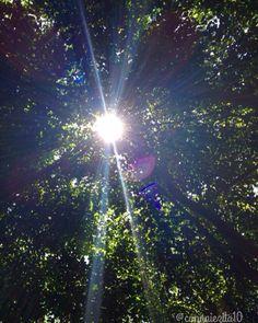 #luz #fotografía #foto