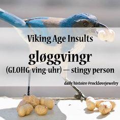 Viking Insult