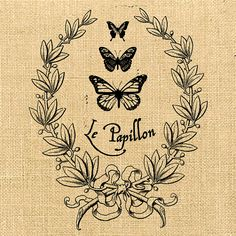 le papillon noir est beau. This reminded me of talking in stupid french phrases haha. @Amanda Snelson Snelson Taylor