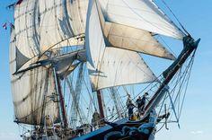 Kuvahaun tulos haulle tall ships race 2017 morgenster kotka
