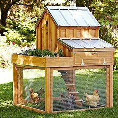 [REVEAL]=>   If you are madly in love with nesting boxes for chickens Diy ,it's not a big surprise .Many people learnt a hard way while building a simple house for their chickens because  they don't know this hack,Click here to reveal it now. This will not be here forever Chicken Coop Pallets, Cheap Chicken Coops, Diy Chicken Coop Plans, Easy Chicken Coop, Backyard Chicken Coops, Building A Chicken Coop, Chickens Backyard, Small Chicken, House Building