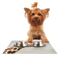Kess InHouse Angie Turner 'Giraffe' Animal Feeding Mat for Pet Bowl, 18 by 13-Inch *** Check this awesome product by going to the link at the image. (This is an affiliate link and I receive a commission for the sales) #MyCat