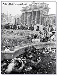 PICTURES FROM HISTORY: Rare Images Of War, History , WW2, Nazi Germany: A City Of Doom: Berlin May 1945 In Pictures