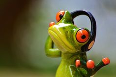 Free photo: Frogs, Headphones, Music, Dance - Free Image on ...