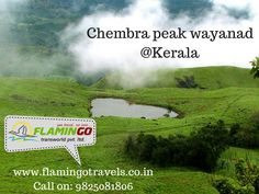 Visit Chembra peak in wayanad with #keralatourismpackages For more details: http://goo.gl/NPJ4C9