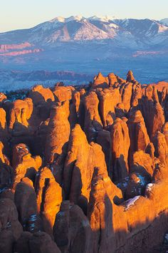 Fiery Furnace, La Sal Mountains, Arches National Park - Grant Collier