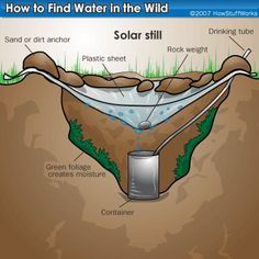 How to Find Water in the Wild. Great for camping in Boundary Waters