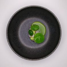 mackerel tartare, cucumber, radishes and a kolrabi, fennel, and grany smith juice | Gregory Marchand | Restaurant Frenchie. Archiving Food Photography | Gastronomy