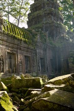 Jungle Temple Light - Angkor Wat, Cambodia. Buy this print: http://www.bencrosbiephotography.pixieset.com/photography