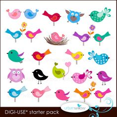 20 LITTLE BIRDS. Digital clip art collection, in Jpeg and Png files.