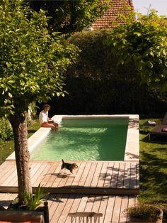 Backyard Pool Designs, Small Backyard Pools, Small Pools, Backyard Patio, Backyard Landscaping, Pool Decks, Kleiner Pool Design, Small Pool Design, Mini Pool