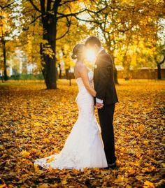 Hochzeitsfoto im Park unter dem gelben Herbstlaub