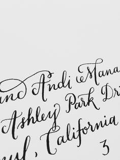 progress! // zebra g nib + sumi ink // #vscocam #wedding #calligraphy
