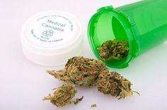 maladies qui répondent mieux au cannabis