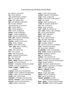 Crazy image pertaining to medical terminology list printable