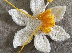 Flor de lotus passo a passo (1)