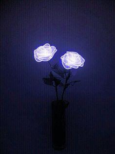 Pin by fahstym on « neon lights Violet Aesthetic, Aesthetic Colors, Aesthetic Pictures, Aesthetic Dark, Pastel Purple, Purple Rain, Dark Purple, Bright Purple, Light Blue