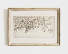 Rustic Artwork, Moroccan Art, Tree Sketches, Cat Art Print, Country Art, Country Decor, French Country, Botanical Drawings, Seascape Paintings